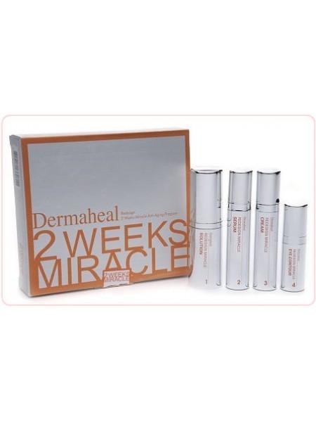 Набор Омоложение за 2 недели - 2 Weeks Miracle Anti-Aging - Средства от морщин на лице - 4 препарата, Dermaheal (Дермахил) - Эффект применения ANTI-AGE