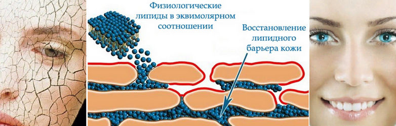 Увлажнение кожи лица и физиологические липиды